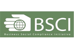 BSCI Consultant in Vietnam (Business Social Compliance Initiative)